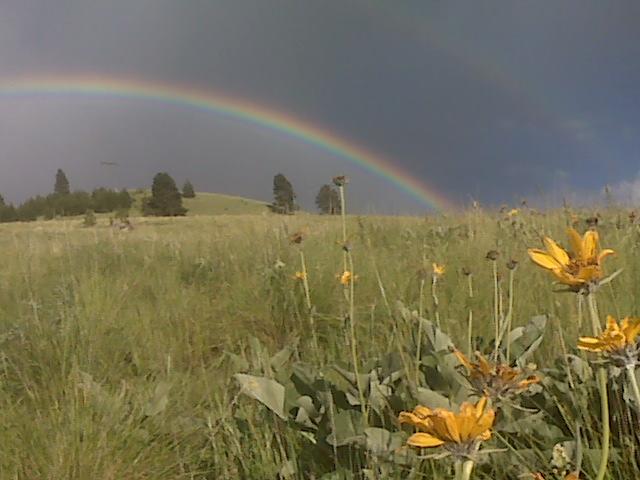 rainbow over Mount Jumbo in the Rattlesnake Valley of Missoula, Montana - on the horizon line